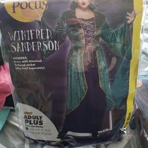 Spirit Halloween Winifred Sanderson dress and wig